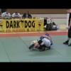 SW SM 2009 -67kg Wictor Dahlström vs Ali Al Rubiaai