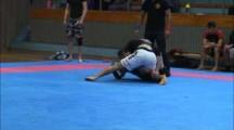 Primate Cup 2012 herrar -71kg Ali Delemi vs Adam Andersson
