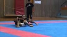 Primate Cup 2012 herrar -71kg Ali Delemi vs David Lejenäs