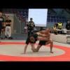 SW SM 2010 -73kg Johan Westerberg vs Efraim Gershater