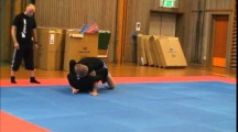 Primate Cup SW 2014 Herrar -76kg avancerade Linus Nyman vs Adam Sundström