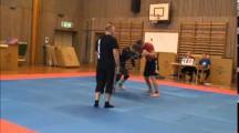 Primate Cup SW 2014 Herrar -76kg avancerade Mikael Rindmyr vs Erik Lindén